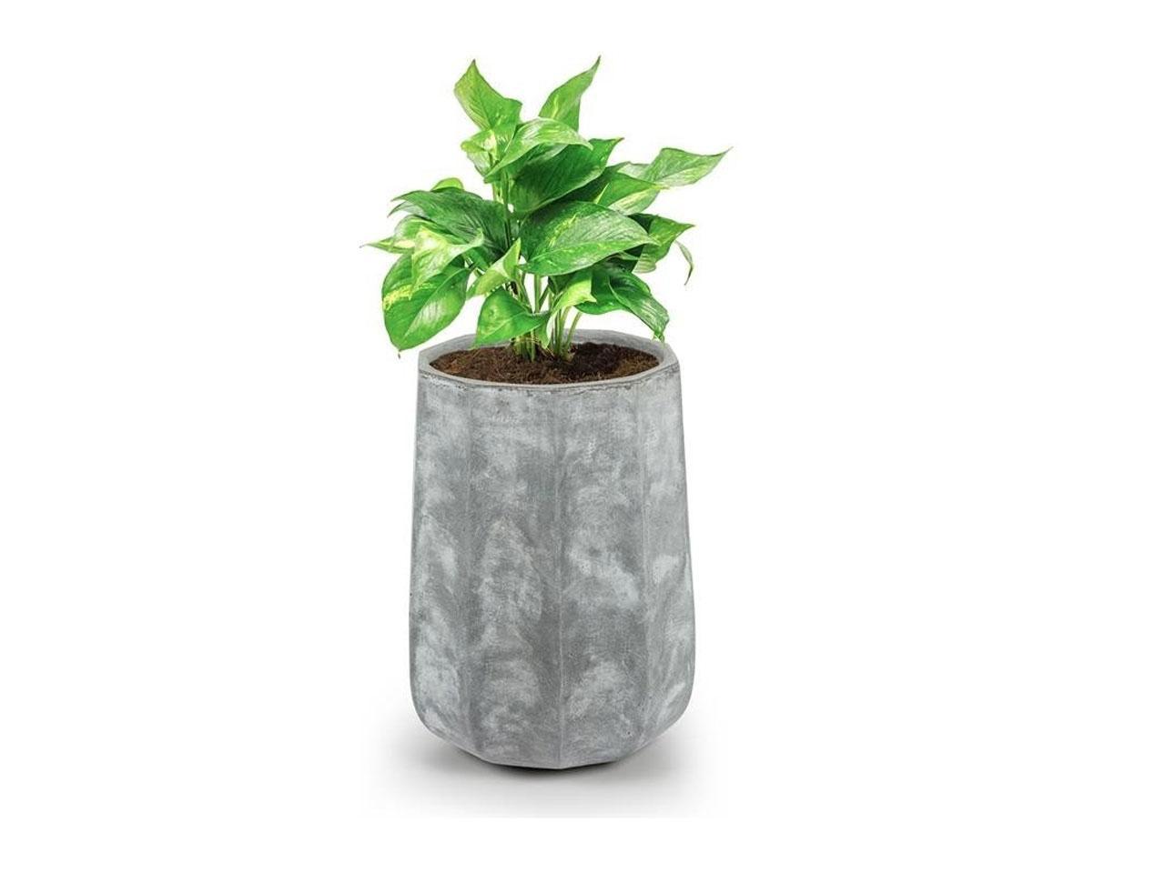 Květináč BLUMFELDT Decaflor, 40 x 50 x 40 cm, světle šedý (GDW11-Decaflor-40.50)