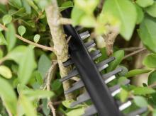 Nůžky na živý plot BOSCH AHS 55-20 Li (0600849G02)